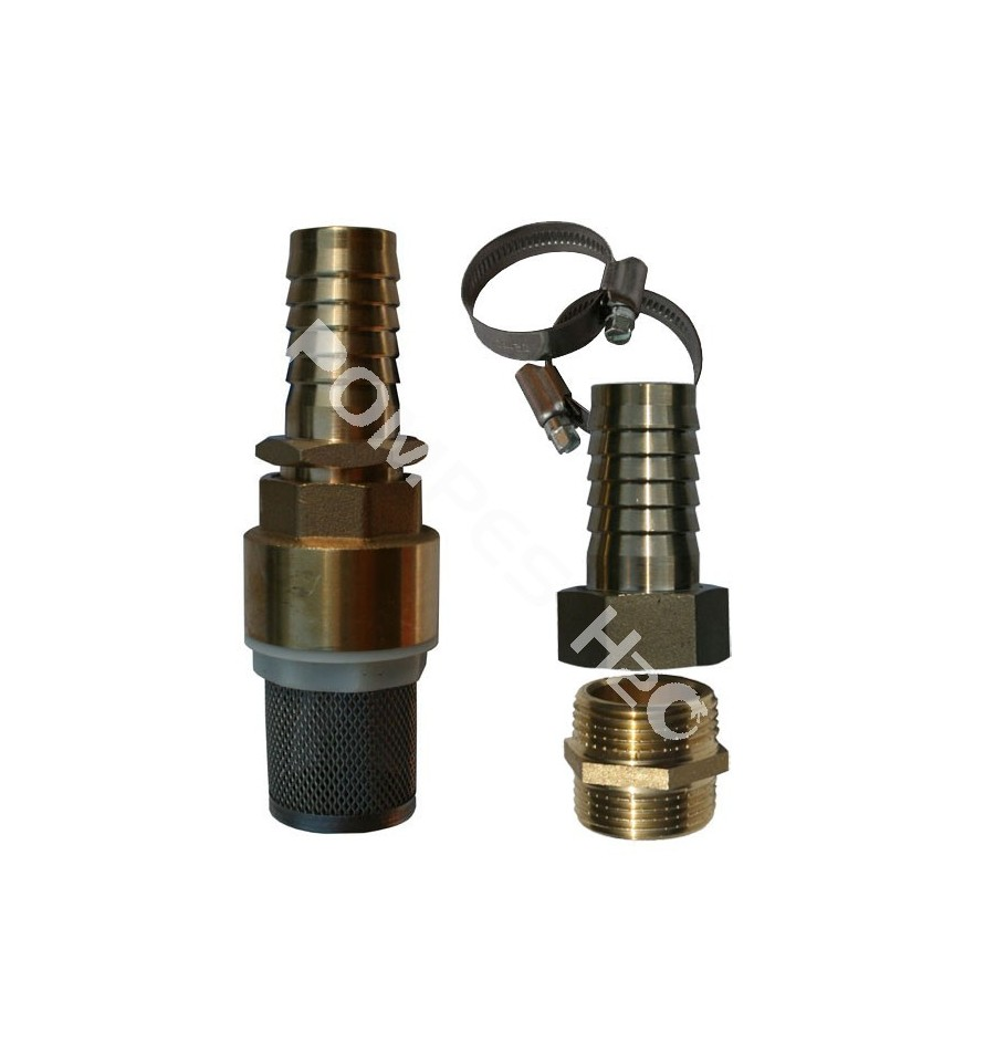 Brass spring check valve strainer