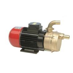 Pompe auto-amorçante en bronze 230V