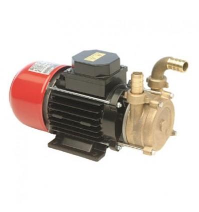 Pompe centrifuge auto-amorçante en bronze TELLARINI ECC 12/20 - ECC 24/20