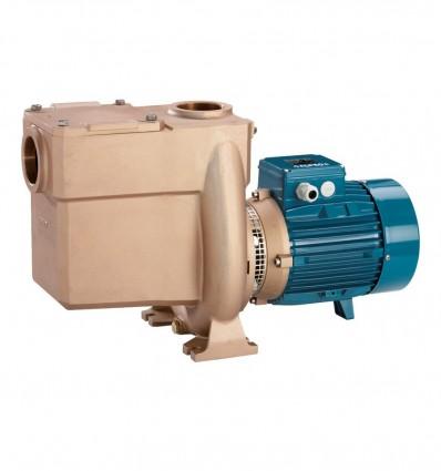 Pompes centrifuges autoamorçantes avec filtre incorporé, corps, roue et couvercle en Bronze (230 V)