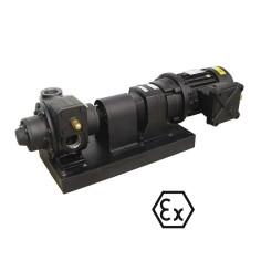 Pompe de transfert gros débit 200 à 1000 l/min pour Essence et Diesel - ATEX EExd