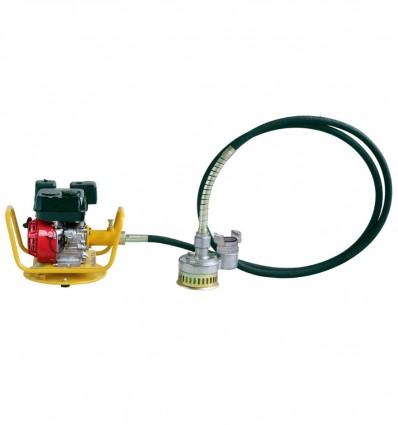 Petrol pump-motor unit with flexible shaft