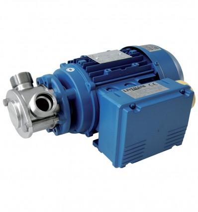 Pompe à roue flexible Liverani MINI - MIDEX - 12/24V